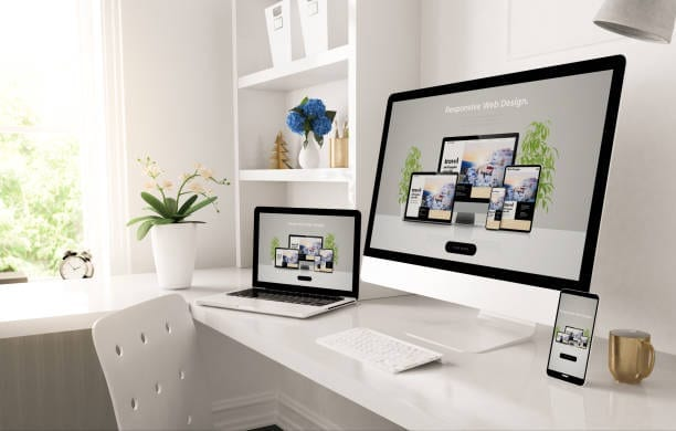 Website design services in Plymouth